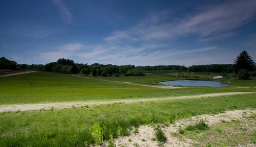 farm fields and pond