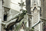 Gargoyle at the cathedral of Notre Dame, Paris, France