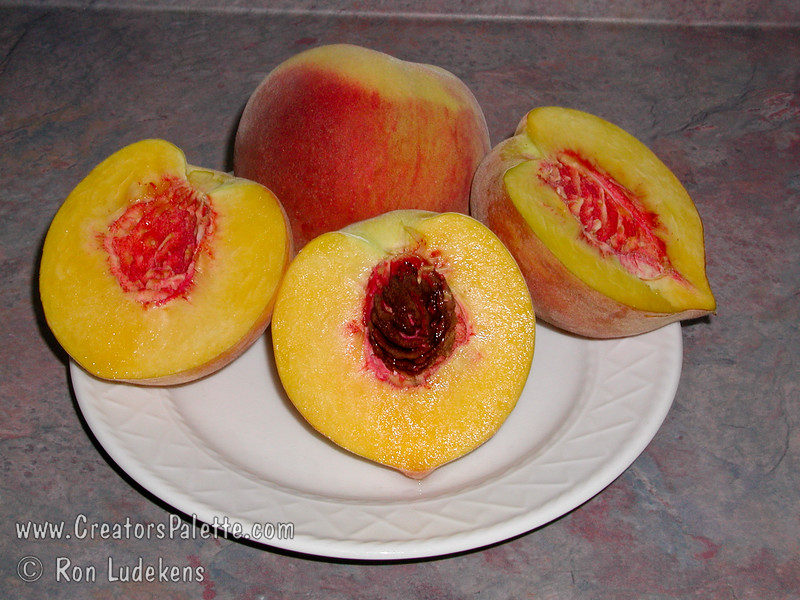Santa Barbara Peach - Sliced