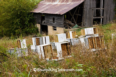 Gray Barn and Beehives, Richland County, Wisconsin