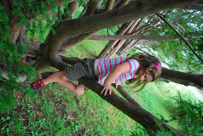 Catherine climbs a tree