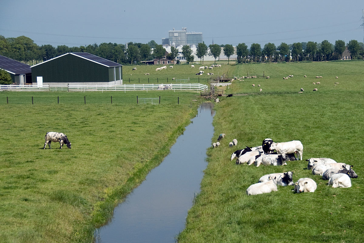 World Heritage Site #87: Beemster Polder