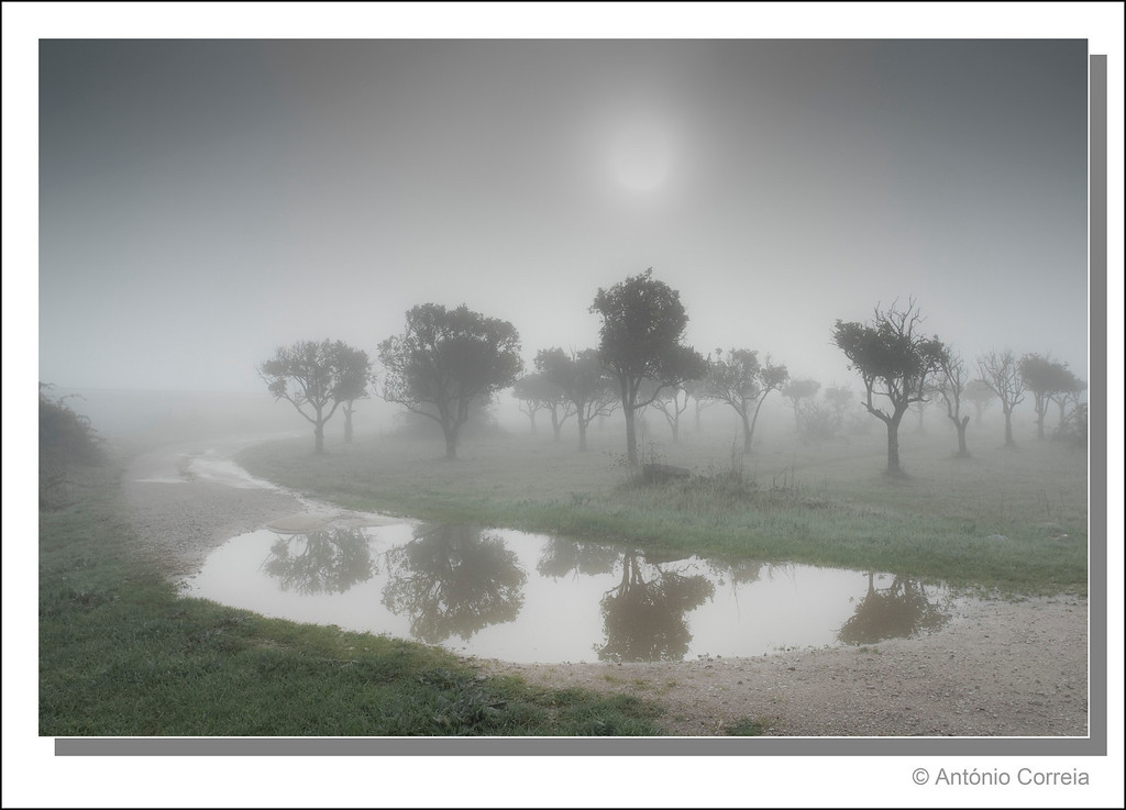 Two foggy images