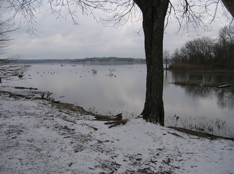 Looking out across the lake with a blanket of ice leading to the water's edge (166_6687)