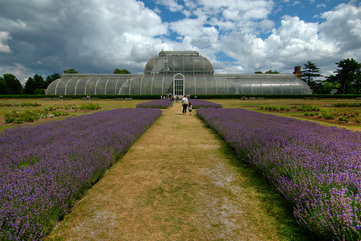 World Heritage Site #91: Kew Gardens