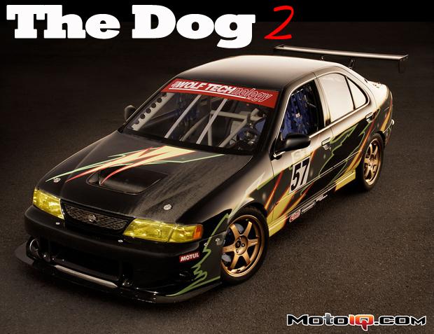 The Dog II