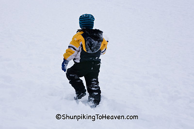 Heading Back Up for Another Ride - Sledding at Elver Park, Madison, Wisconsin