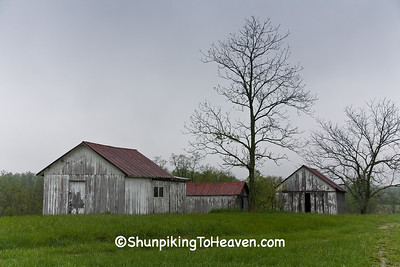 Abandoned Farm, Brown County, Ohio
