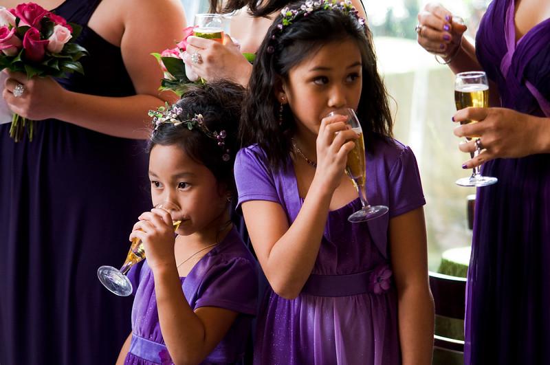 tivoli terrace wedding photo, flower girls, toasting,