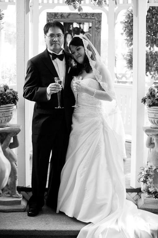 tivoli terrace wedding photo, bride and groom, candid photo, toasting,