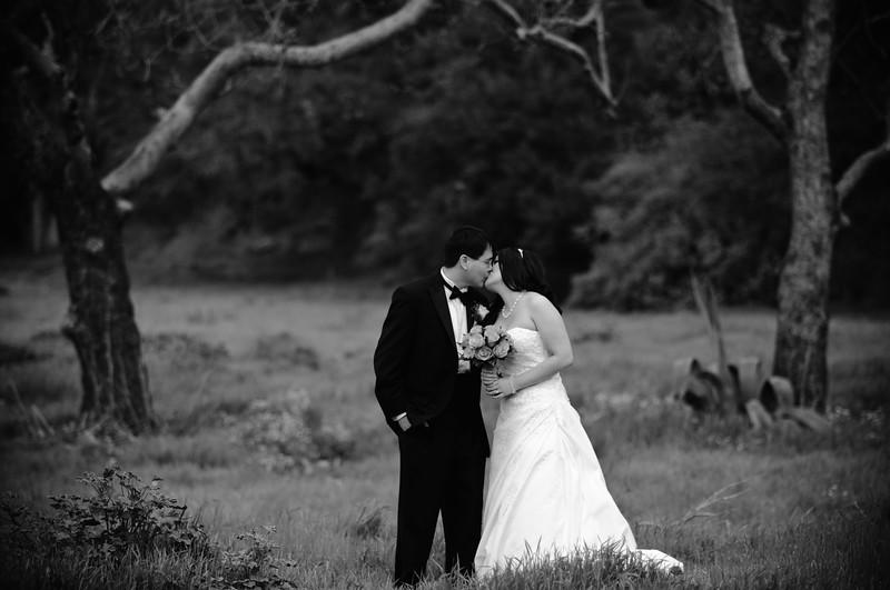 tivoli terrace wedding photo, Laguna bridal portrait,
