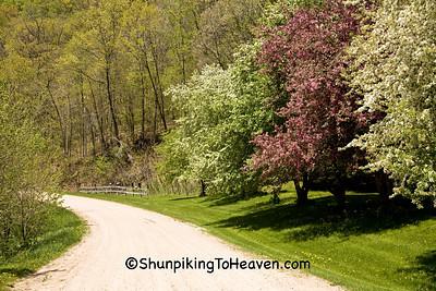 Spring Road Scene, Vernon County, Wisconsin