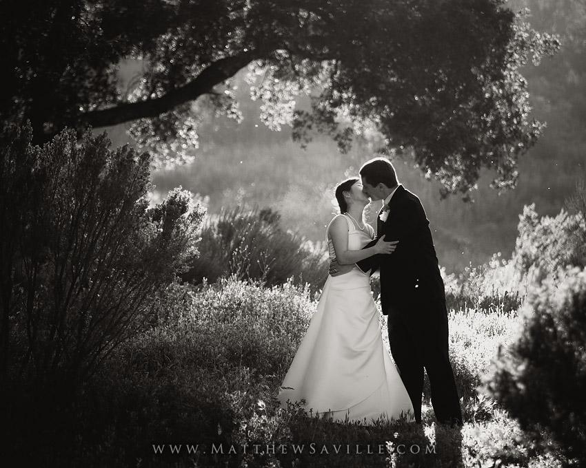 Oak Park wedding photos,