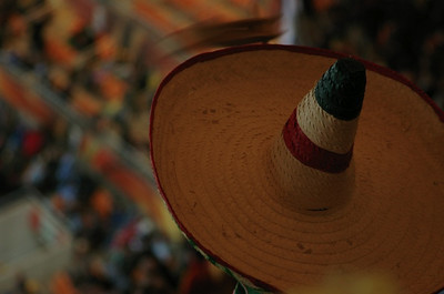 A Mexican supporter watches his team play Argentina at Soccer City. What better identity than a sombrero?