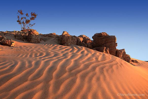 Mojave Desert Dunes