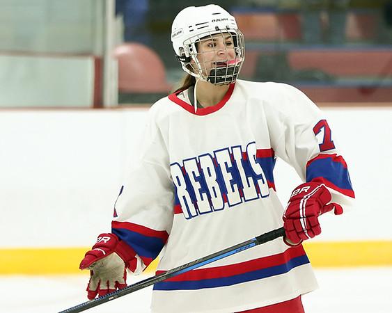 2017-18 Moose Lake Area Girls Hockey