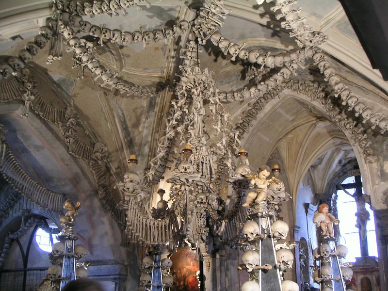 15 Bone Chandelier.JPG