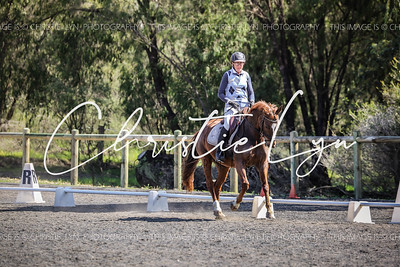 Henty Dressage Training Day