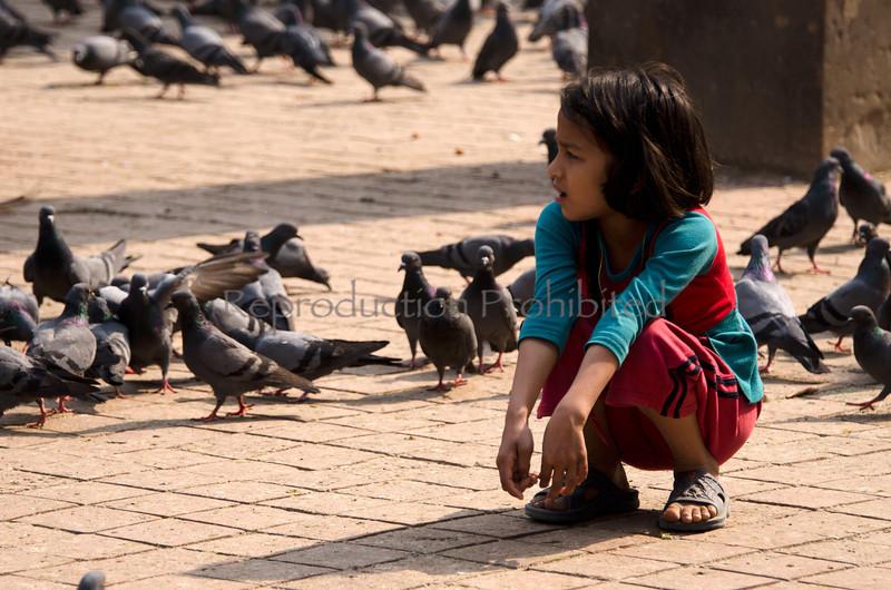 girl among pigeons.jpg
