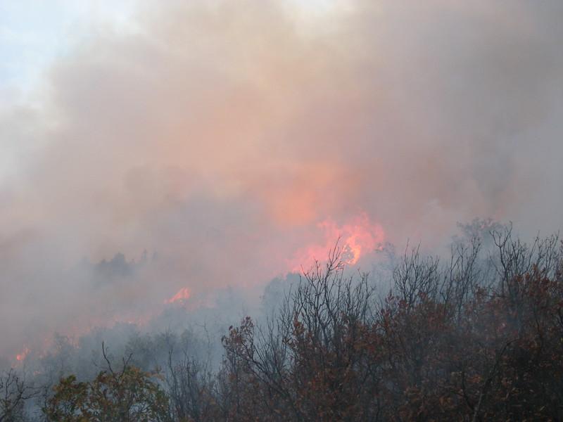 waterton canyon fire.JPG