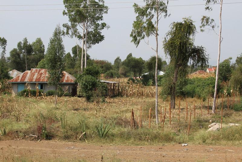 Kenya Part1 '15 1002.JPG