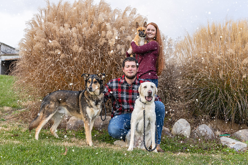 The Woods + Family | Christmas Session in Mount Sidney, VA