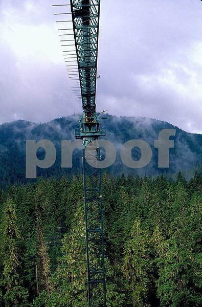Canopy crane 6.jpg