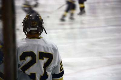 Ty Hockey February 2009