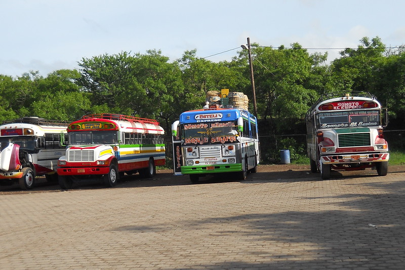 row of colorful buses