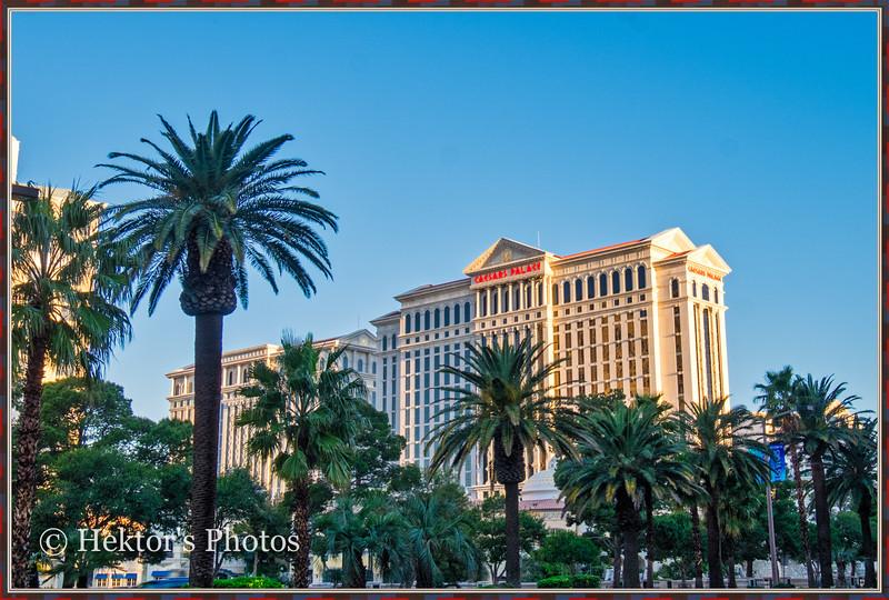 Las Vegas Strip-16.jpeg