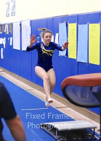 2014 BHS Gymnastics