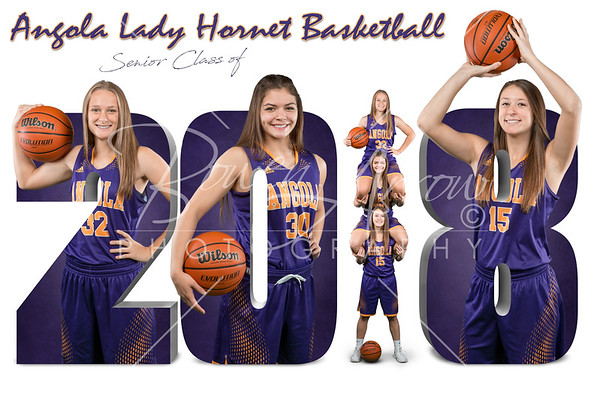 Basketball Girls 2017-2018