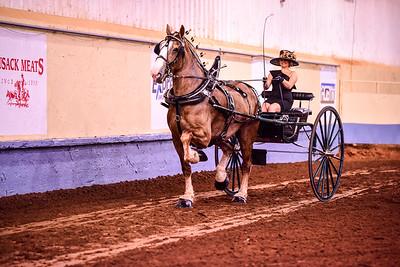 109 Ladies Cart