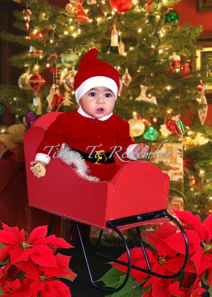 Presents and Sleigh_5x7.jpg