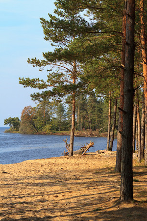 Baltic Sea & River Gauja