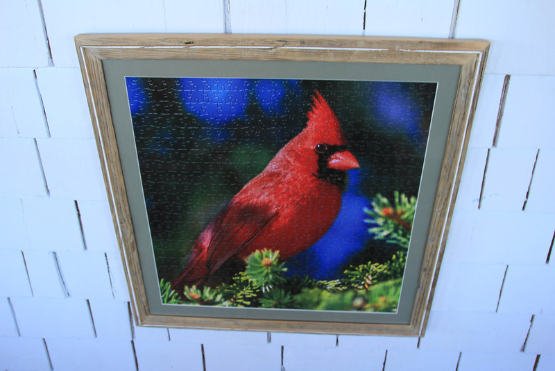 Yes... that is a puzzle... this cardinal had no idea he could be so classy!