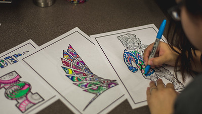 120116 Adult Coloring Book