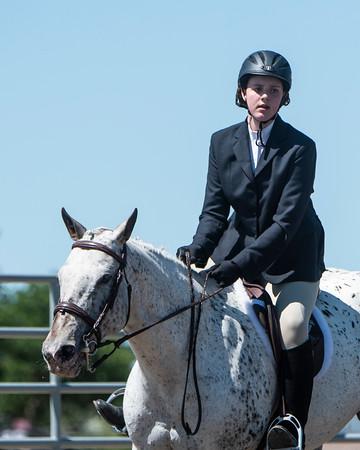 DES 2019 Horseshow #'s 106 to 110