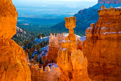 Bryce Canyon Beauty