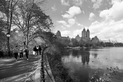 New York City in Black & White