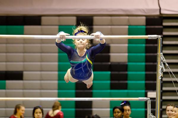 Gymnastics 20180116