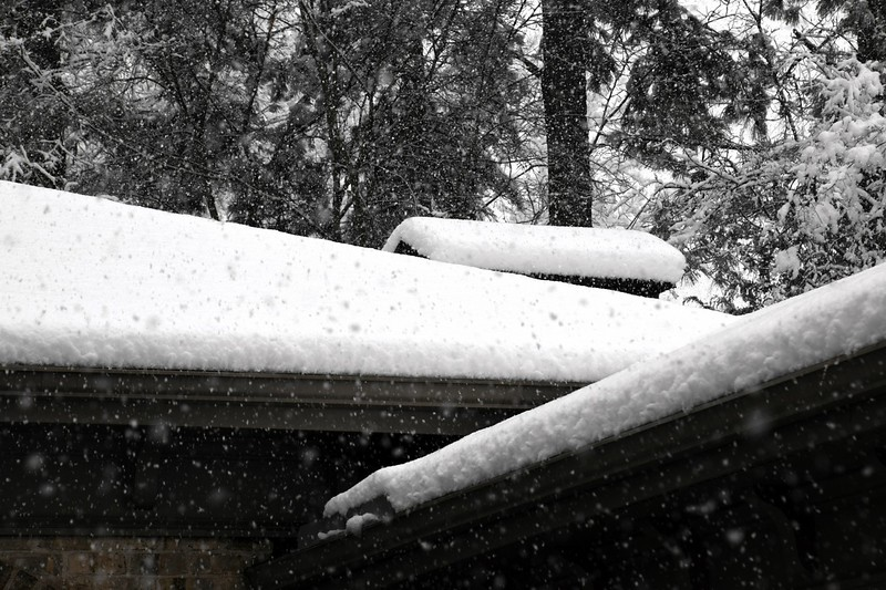 snow_o1_2018_108.jpg