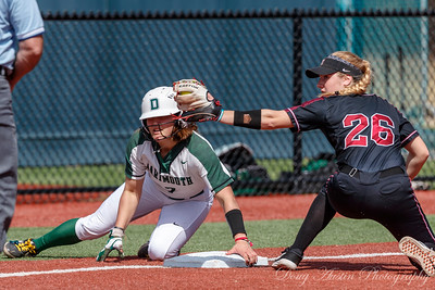 Harvard vs Dartmouth Softball