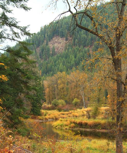 fall 2019 st maries river-1676.jpg