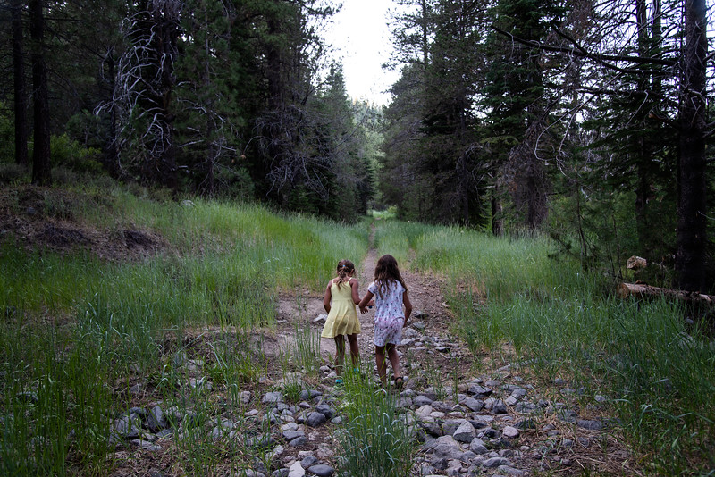 Photo taken during my Summer 2019 camping trip with Nyah and Riley. San Luis Obispo, Sacramento, Lake Tahoe and Kings Canyon National park.