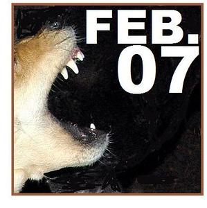 07 FEBRUARY