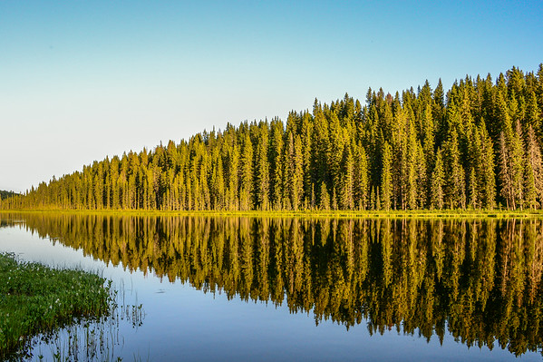 6-25-14 Lake Scenery