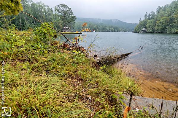 Seed Lake Cabin YA