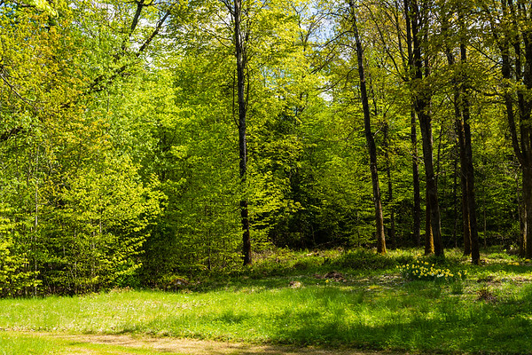 0519 Panorama Kvarnvägen