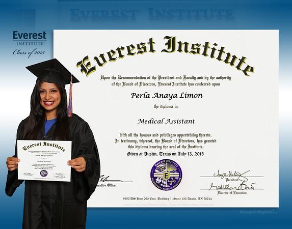 Everest Institute